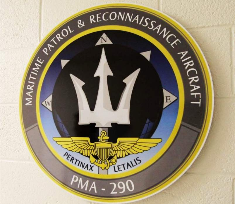 Military Insignia Displays - PMA 290